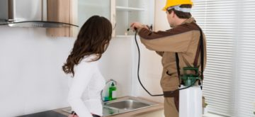 How to Deal with Pests in Your Home